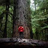 Wildes Kanada – Vancouver Island / Restplätze