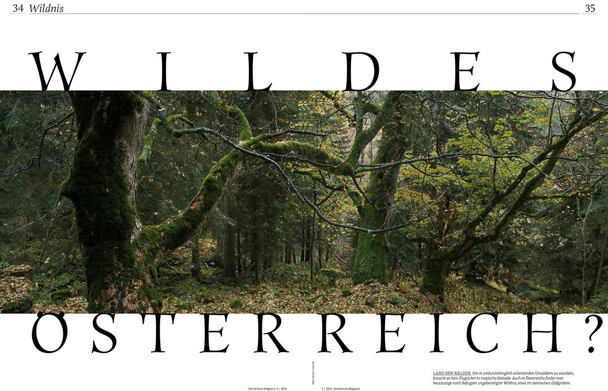 19_Wildes Oesterreich